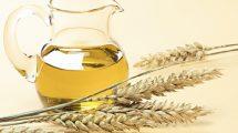 buğday yağı saç ve cilt bakımı
