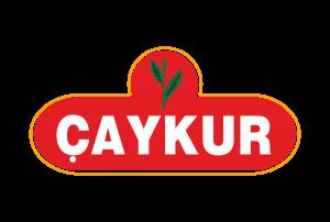 caykur-logo-300x202